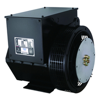 High Quality Brushless 100 Amp Generator