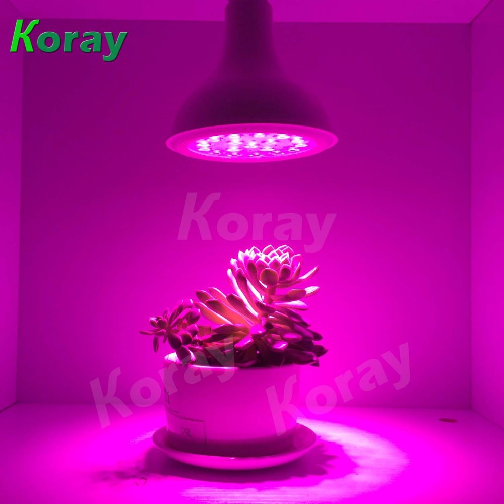 wholesale alibaba plant light bulb 2017 PAR38 15W led grow light full spectrum