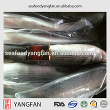 frozen seafood fish grey mullet whole round fish for sale