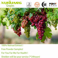 Kosher/ Halal/ ISO 9001 Certificate Water Solubility Grape seed p.e. OPC 95%