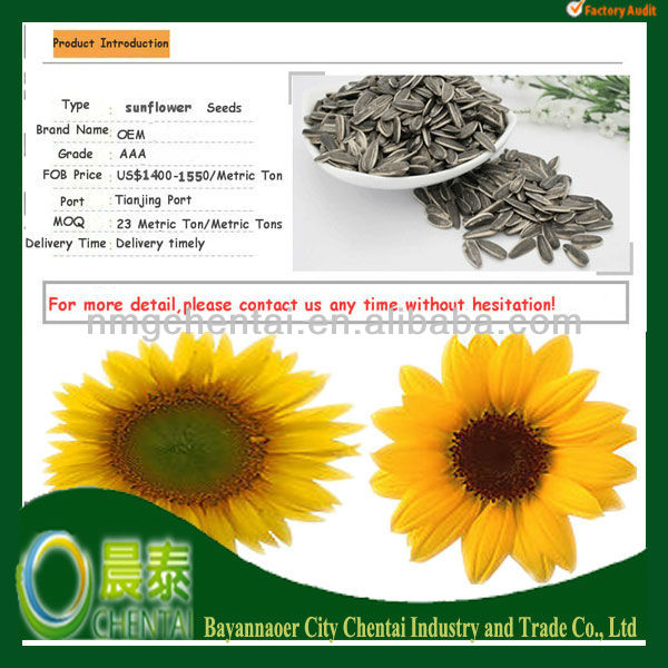 Good Quality Different Types Of Sunflower Seeds