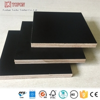 18Mm Stable Structure Durable Phenolic Bp