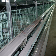cheap chicken layer cage for small scale farm /popular in Africa