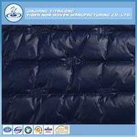 Factory Embroidery Polyester Fabric for Winter Jacket/Coat/Textile