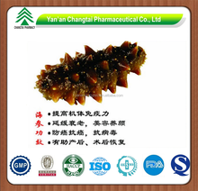 GMP factory supply herb Gamat (sea cucumber) P.E. Holothurin
