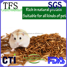 dried mealworms bird food edible insects for pet food