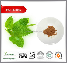 100% Natural Lemon Balm herb Extract, Melissa officinalis P.E. 10:1 20:1, Lemon Balm leaf Extract powder