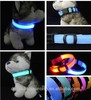 LED Dog Glowing Collar Leash hot sale pet collar