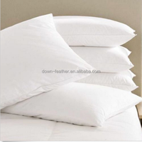 White Plain Pure Cotton 30% White Goose Down Feather Throw Pillows