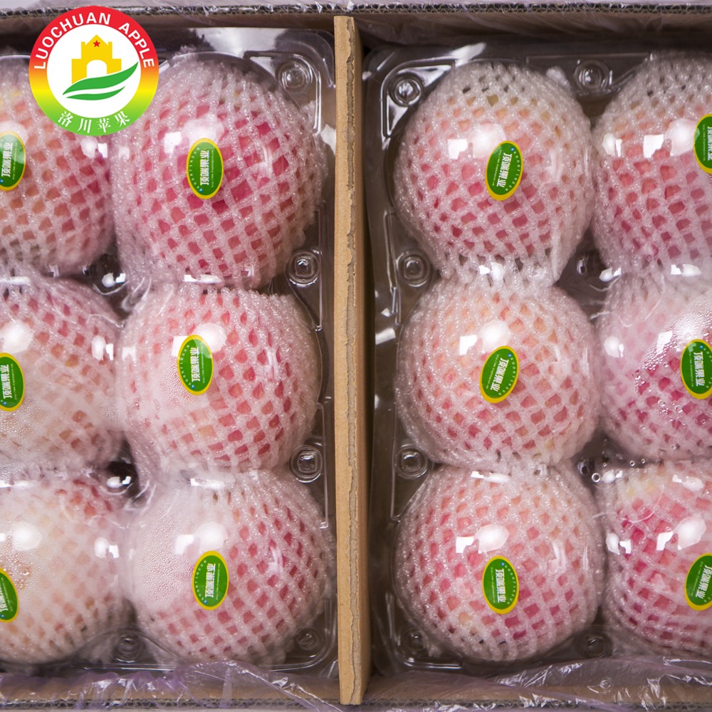 The crunchy red Apple Luochuan Fuji apple best fruit market prices apple