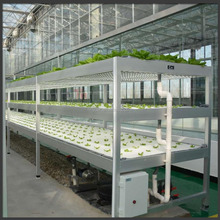 Commercial Portable Hydroponic Solar Glass Garden Greenhouse Sale In USA