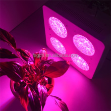 Indoor Grow Lamp Greenhouse Flowers growing High Power Led Grow Light 300W Full Spectrum Led Plant Grow Light Panel