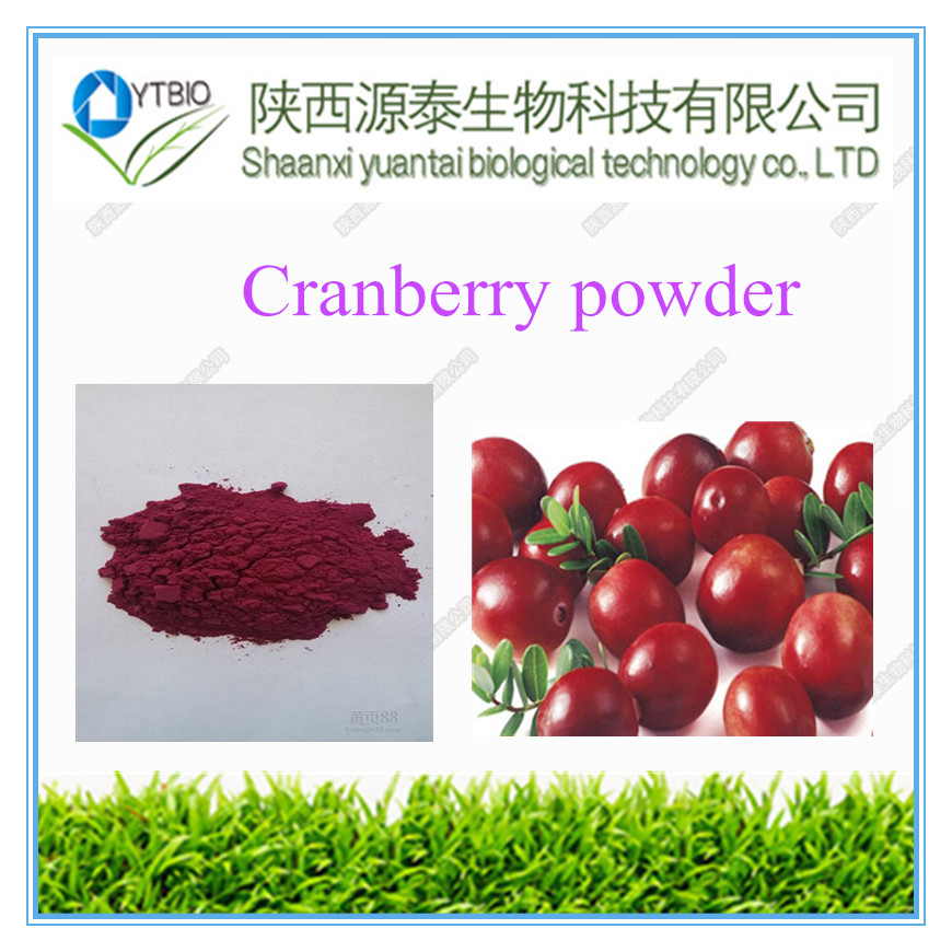 Best price pure natural plant extract// cranberry extract powder
