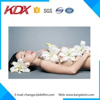 3D Lenticular Picture For Promotion,hot girl sexy picture 3d for bar decoration