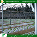 Agricultural single tunnel hydroponic growing systems greenhouse