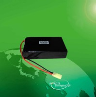 High Capacity 10000mAh 11.1V 12V Lithium Polymer Battery