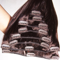 Companies Looking For Distributors 8 Inch Clip-In Human Hair Extensions