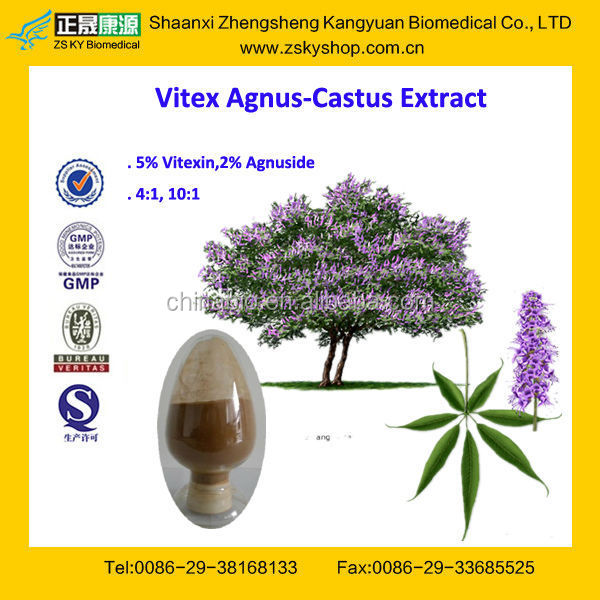 GMP Certified Vitex Agnus Castus Extract Powder