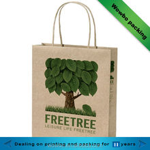 Eco friendly Recyclable printing craft paper shopping bag with handle