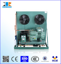 XRB Series Bitzer Semi-hermetic Condensing Unit for cold room