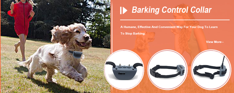 Amazon Top High Quality Pet Training Products Vibration Anti Dog Bark Collar