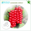 Pure schisndra extract,schisandra chinensis extract powder with nice price