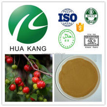 High quality golden berries extract,golden berries for weight loss,incan golden berries