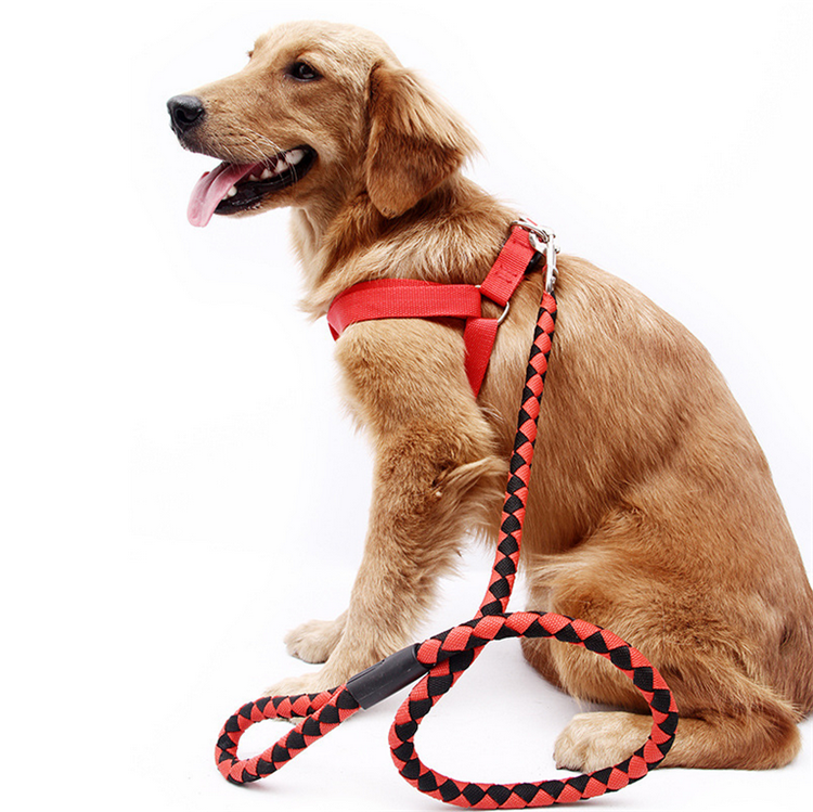 Pet Harness Nylon Adjustable Safety Dog Harness Chest Straps Belt And Dog Lead Leash Set