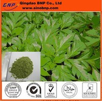 Buy China Supplier Free Sample Ashitaba Extract in China on ...