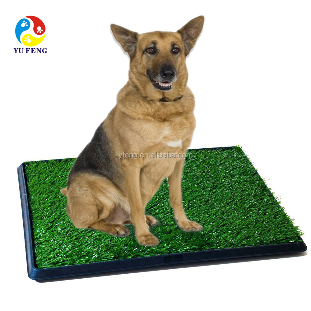 Hot selling Puppy toilet training product