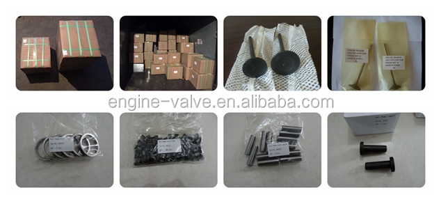 new and high quality intake & exhaust engine valve guide for k300/1600/CD4/F22/CB1/F20