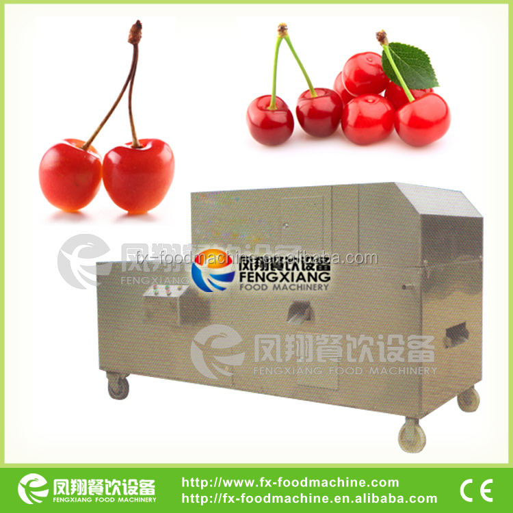 CY-I Fruit Deseeding Machine, Fruit Seed Removing Machine (SKYPE: selina84828, Mob/Whatsapp: +86 18902366815)