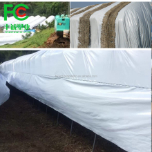 Hot promotion 6mil 24ft x 100ft Black White Poly Film/Hydroponic Black and White Film for Mushroom