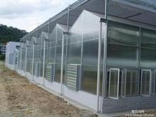 UV coated transparent mushroom greenhouse / plastic sheets for greenhouse