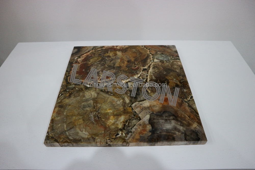 High petrified wood gemstone big slab for countertop with good price