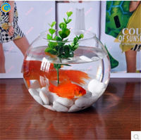 Hot sale Chinese small glass fish tank