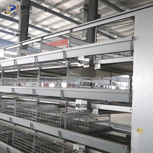 chicken cage/chicken cage factory design layer cage for chicken farm /type-H