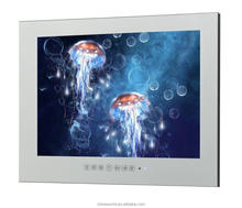 "17"" Water Resistant Interior Shower TV"