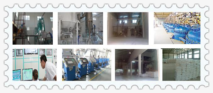 production of calcium stearate.jpg
