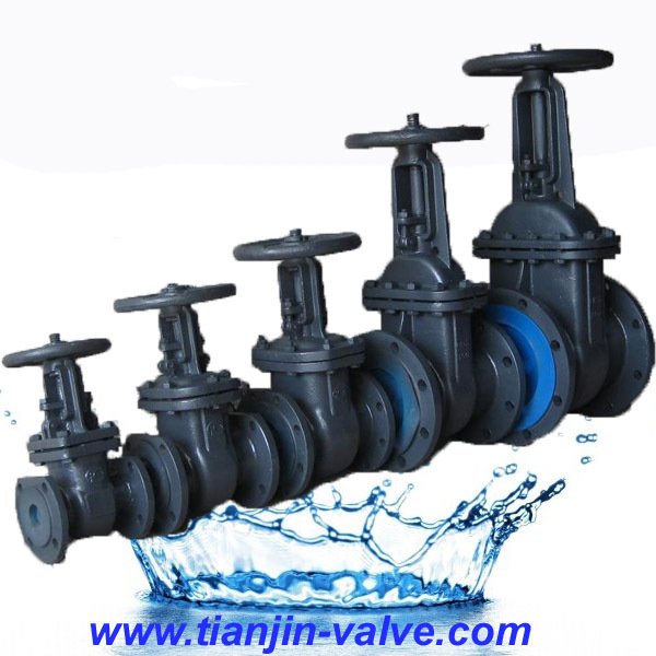 pressure seal high pressure steam gate valve