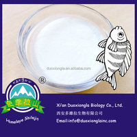 Salmon fish powder collagen , marine collagen powder 100% natural