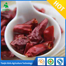 factory red pepper export price