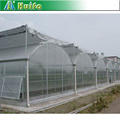 High Quality Transparent Polycarbonate Sheet Greenhouses for Agricultural
