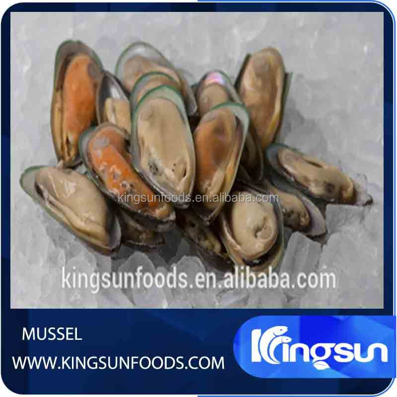 Mussel Half-Shell First Class Frozen Mussel Meat
