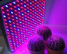 Shenghui Good Sale Factory Price hydroponics lamp led grow light for greenhouse 120W Grow Light