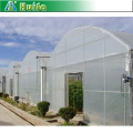 High Tunnel One Stop Gardens Greenhouse Parts in China