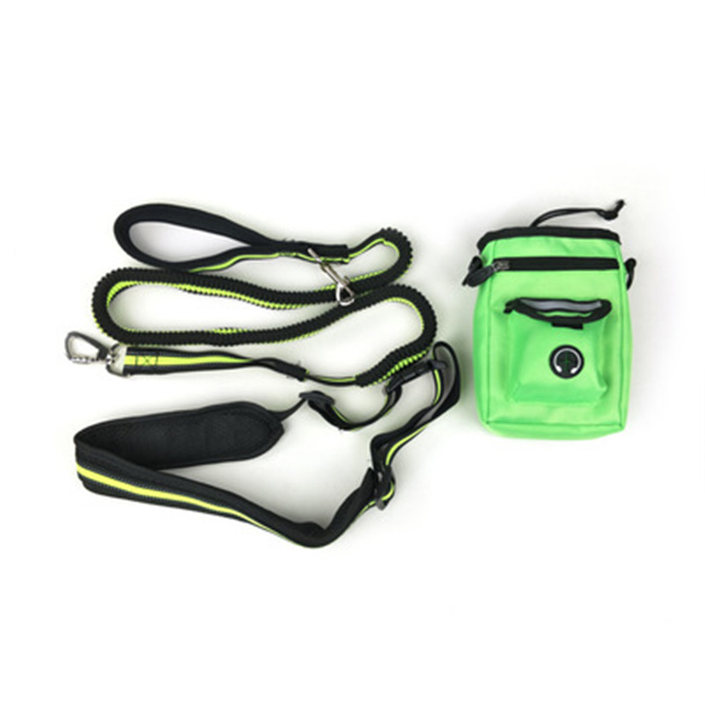 Nylon Dog Leash Material Flexi Retractable Dog Leash with Flashlight and Bag