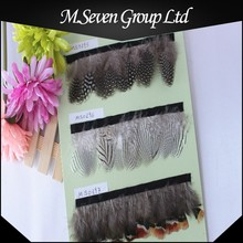Wholesale Ostrich Feather for Clothing