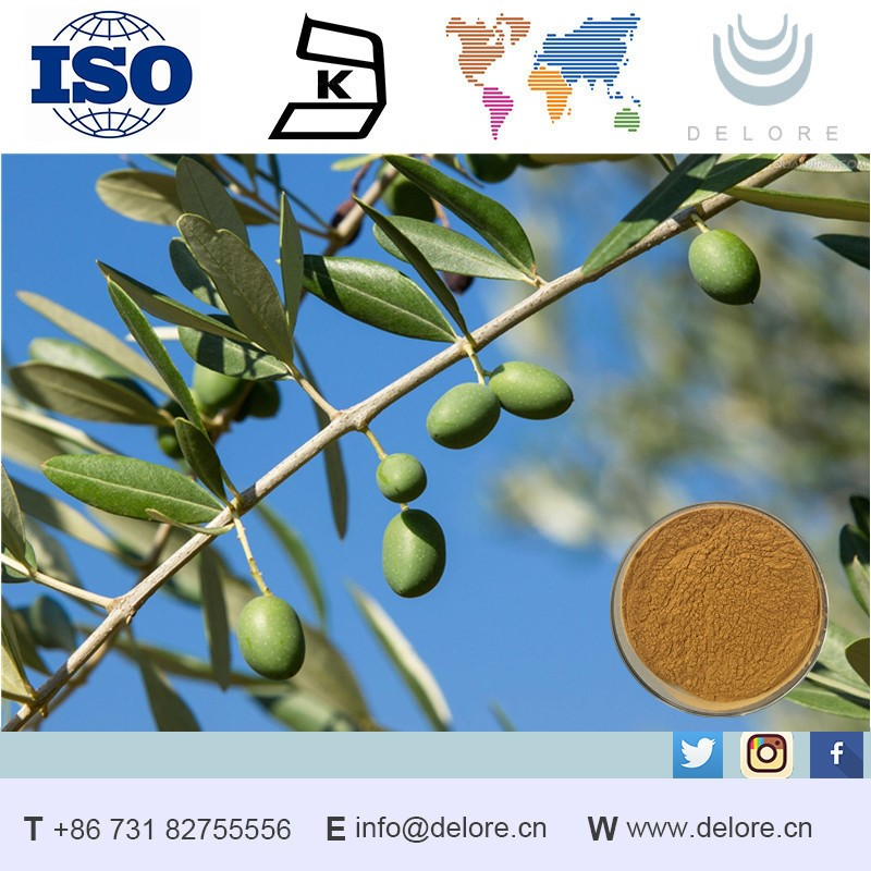 2017 HOT SALE Free Sample Water Soluble Olive Leaf Extract Oleuropein Reduce Melanin