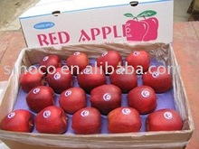 red delicious apple/huaniu apple 2015 crop